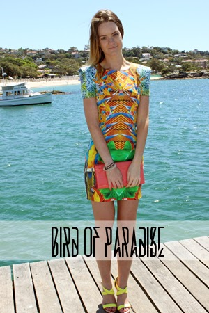 http://www.thelovelythrills.com/2014/01/bird-of-paradise.html