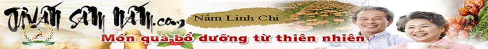 Nhân Sâm|Linh Chi
