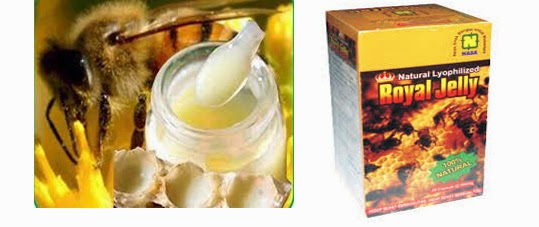 natural-lyophilized-royal-jelly-produk-nasa-asam-amino-vitalitas-seksual-stokist-online