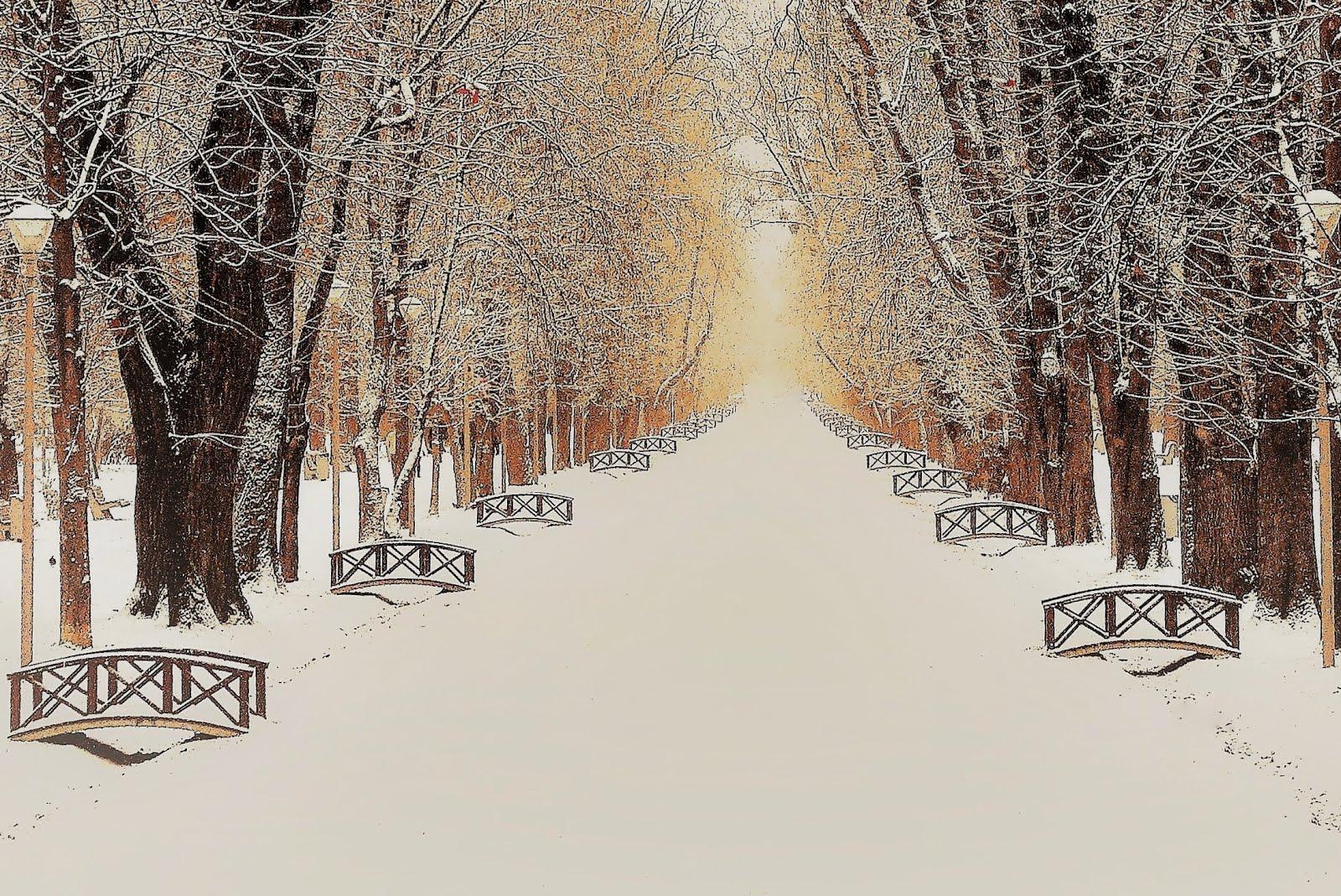 Iarna în parc