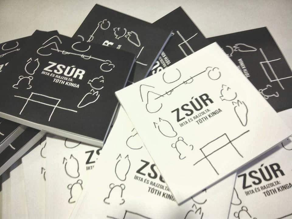 ZSUR BOOK