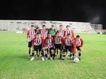 Primera 2011