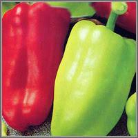 Сладкий перец сорт «Здоровье»