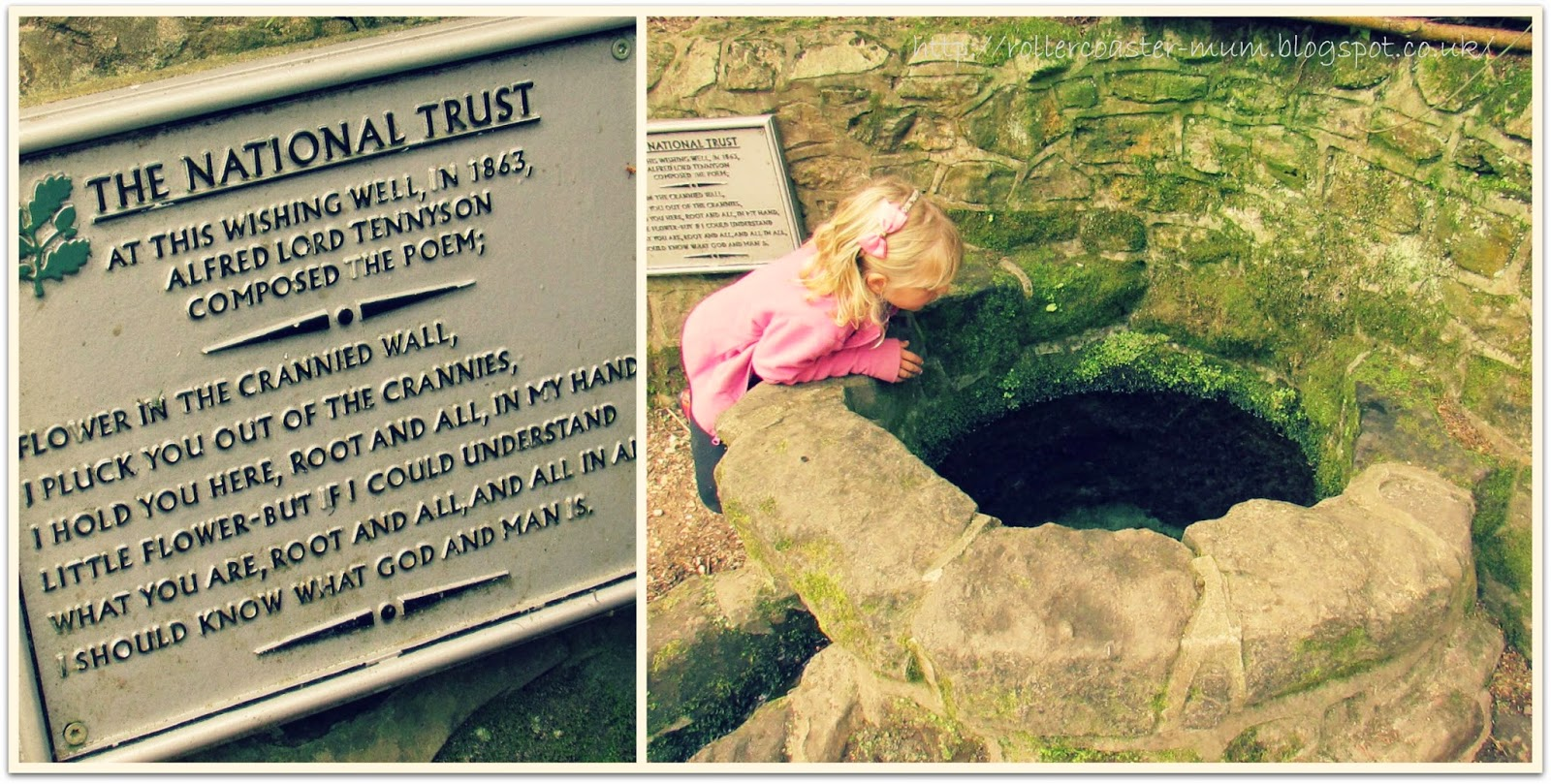 Tennyson's poem by the Wishing Well at National Trust Waggoners Wells