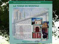 Plafó informatiu del conjunt pre-romànic de la Tossa