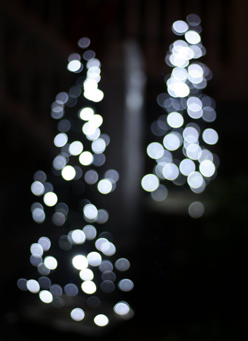 Lights For Christmas Tree