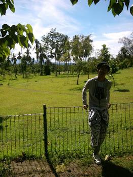 My Pict :D