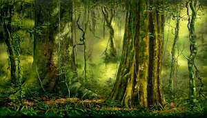 Selva del Moconá