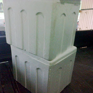 Jual styrofoam box.