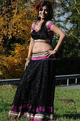 Nisha agarwal in hot photos