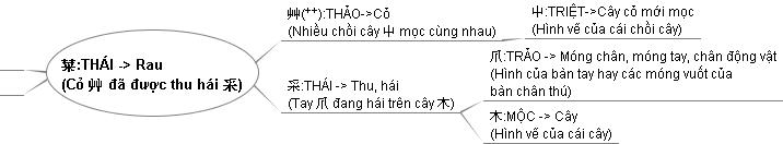 Y nghia cua chu Thai