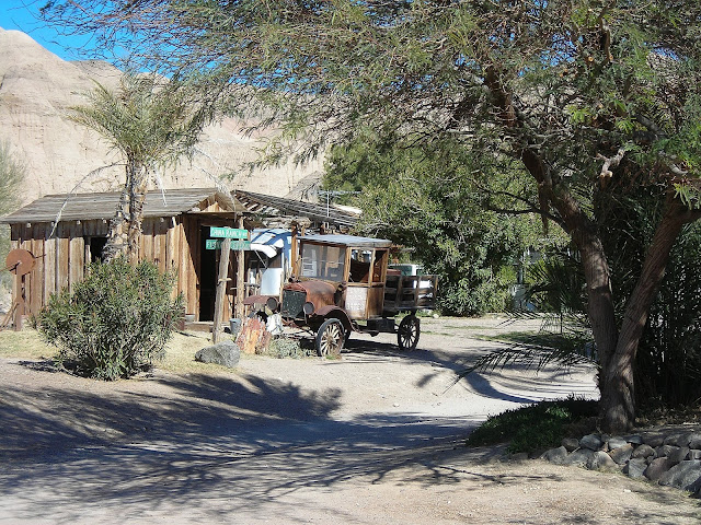 China ranch date farm