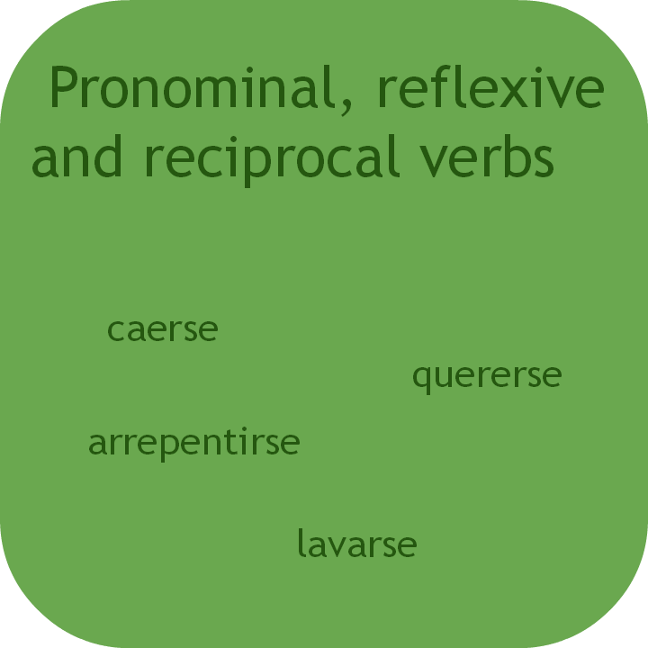 Spanish pronominal, reflexive, reciprocal verbs. Visit www.soeasyspanish.com