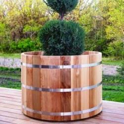 Jardineras y macetas con plantas tomar una decisi n for Que plantas poner en una jardinera