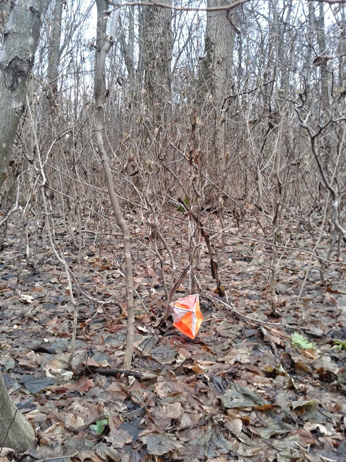 контрольный пункт на местности (охота на лис)