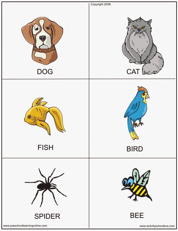FLASHCARDS FOR KIDS: Printable Animal Flashcards Printable Animal ...