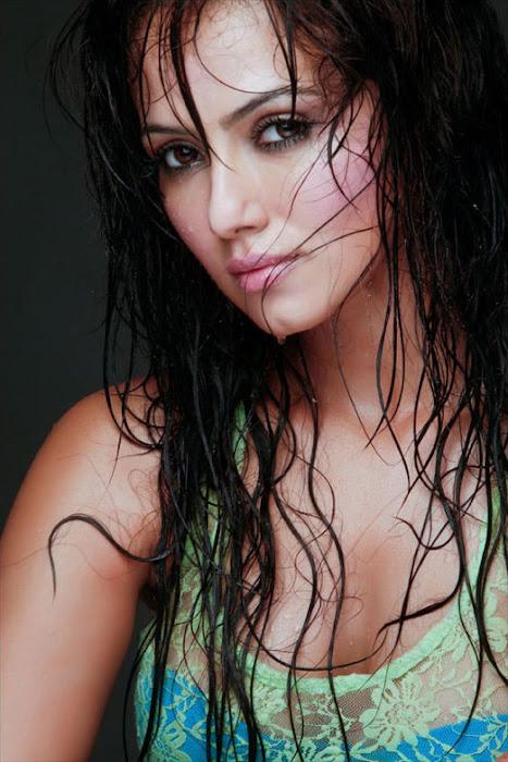 sana khan , sana khan actress pics