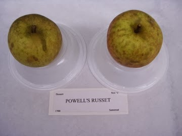 Powell's Russet
