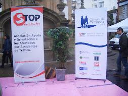 PONTEVEDRA , 2012