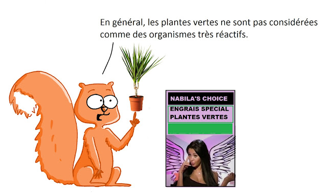 http://kidiscience.cafe-sciences.org/articles/drole-de-plante-mimosa-pudica/
