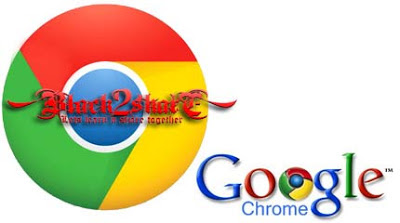 Google Chrome v22.0.1229.94