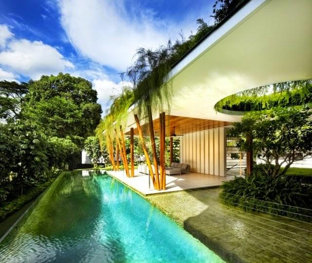 amazing pool design photos