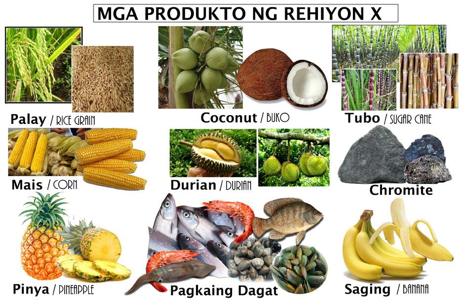 Rehiyon X
