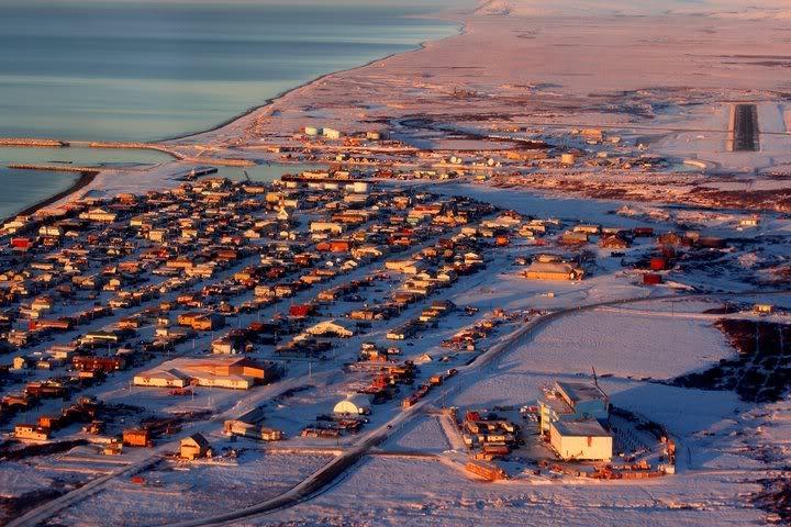 Everything English!: The Iditarod