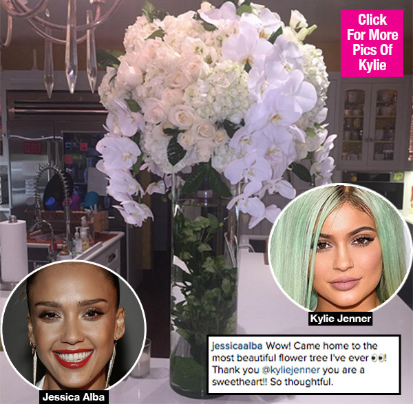 Kylie Jenner Apologizes To Jessica Alba With Flowers After Bodyguards 'Body Check' Her- Hollywood news