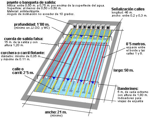 Dj p9 concepto antecedentes hist ricos reglamentos for Metros piscina olimpica