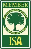 ISA Professional Member