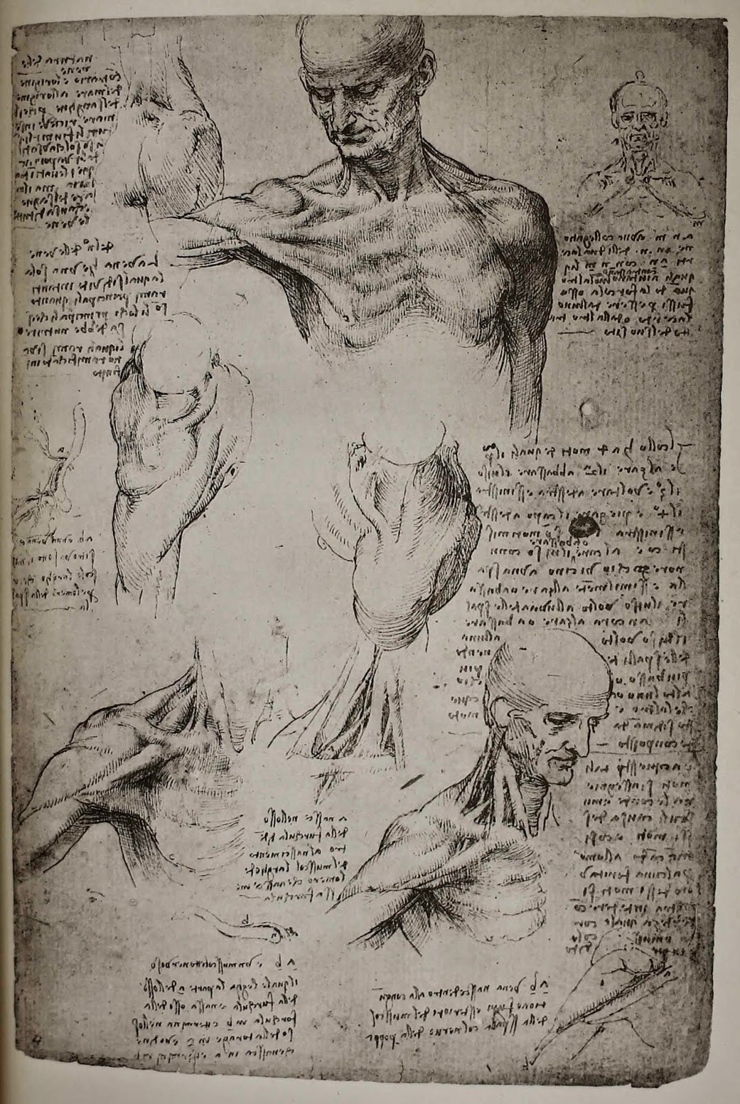 Brandeis Special Collections Spotlight: Leonardo da Vinci collection