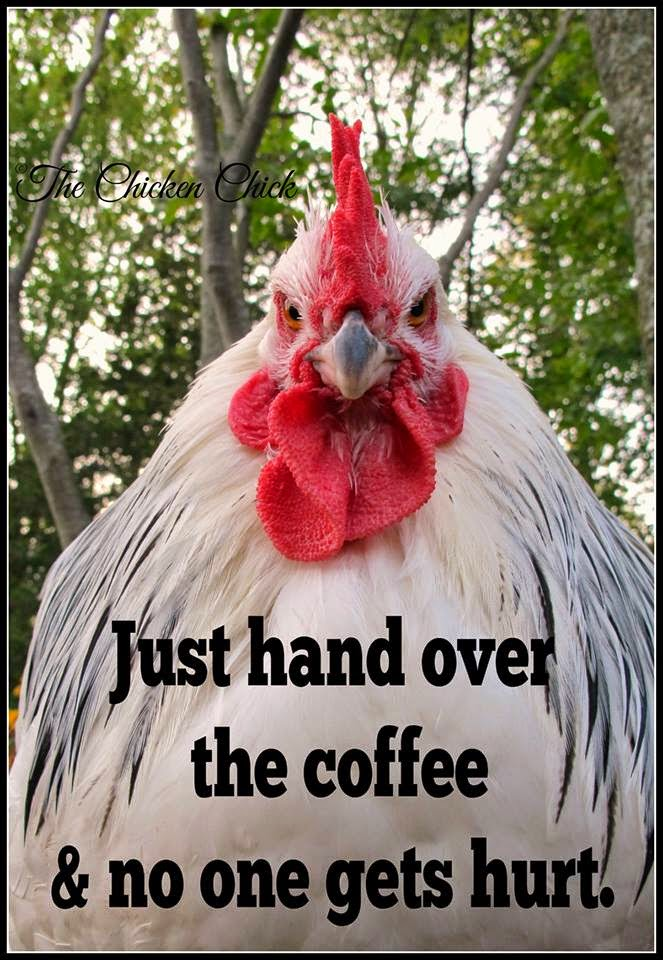 Just hand over the coffee and no one gets hurt. via The Chicken Chick