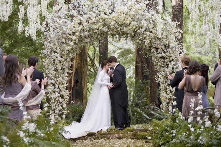 The Twilight Saga : Breaking Dawn - Part 1