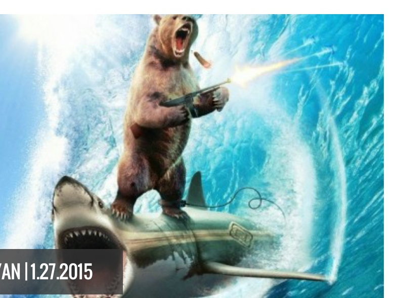 The Left Shark and Center Bear blog