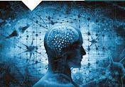Neurobioetica e trapianto di testa