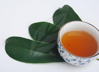 manfaat teh daun sirsak