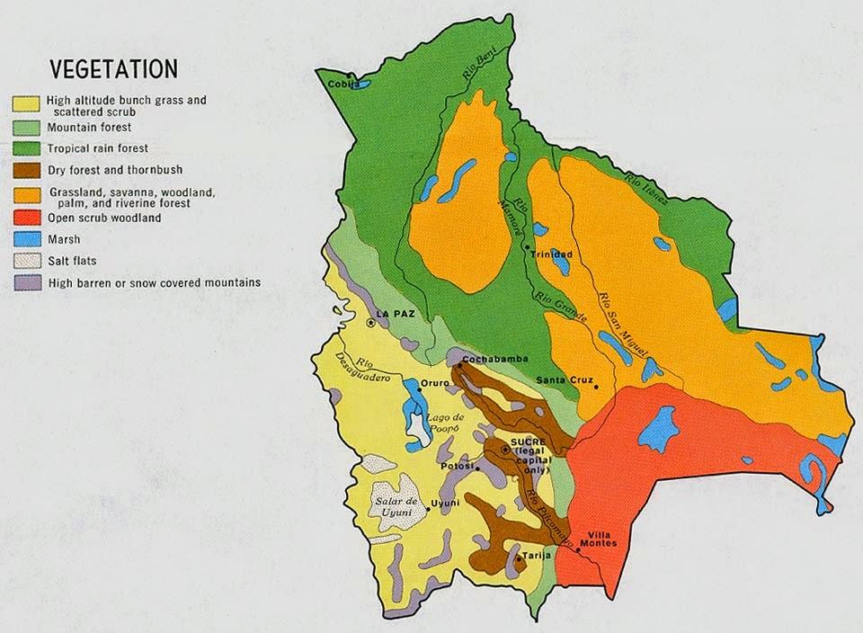 Online Maps Bolivia Vegetation