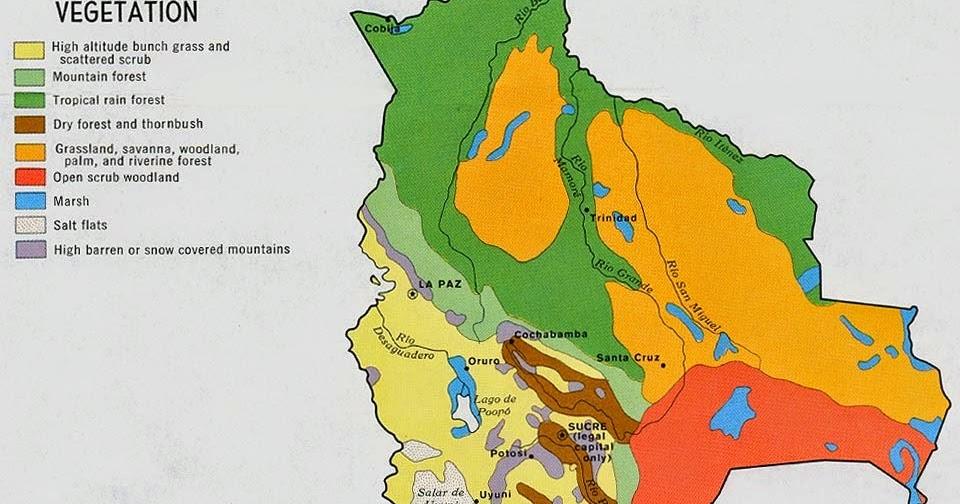 Online Maps Bolivia Vegetation - Argentina vegetation map