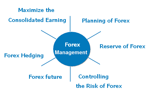 Importance of forex