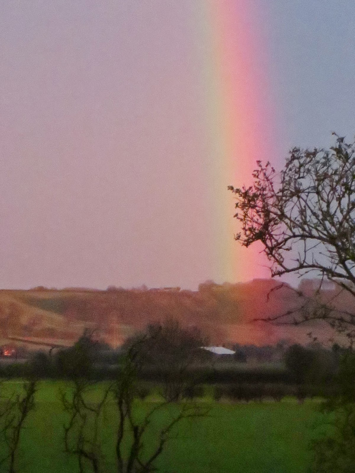 rainbows in the east