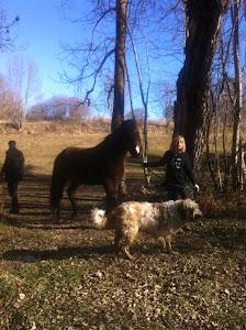 Jo,el meu cavall Buran i la meva gosseta Koa