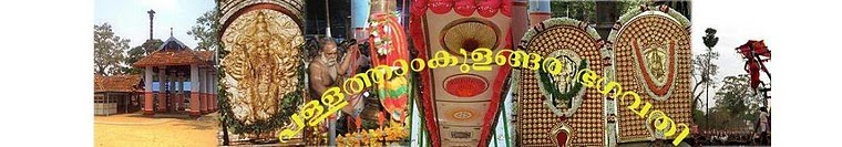 Thanthri- Pallathamkulangara Bhagavathi Devaswom