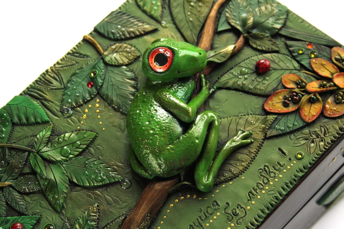 Mandarin Duck Curious Froggy Polymer Clay Jewelry Box
