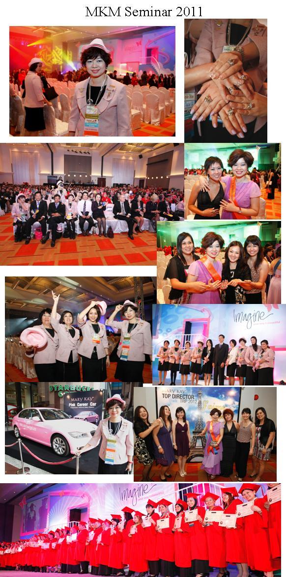 MKM Seminar 2011