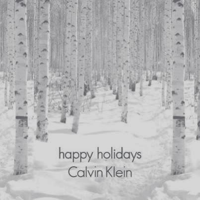 Christmas Calvin Klein 2013