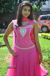 Priyanka-Stills-at-Adi-Lekka-Movie-Trailer-Launch