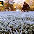 Ministro de Agricultura reafirma llamado a la calma ante efectos producidos por últimas heladas