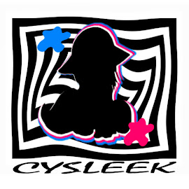 CYSLEEK IMAGE
