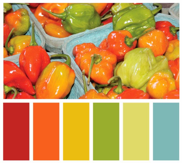 Color Swatch Palette made from a photo of peppers